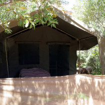 caracal_glamping_space