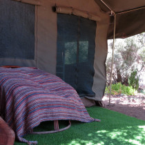 caracal_glamping_space_3